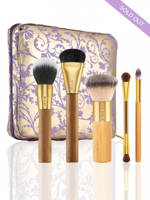 brushed with destiny set of 5 bamboo brushes & makeup bag